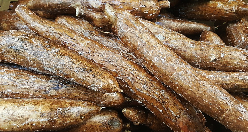 Nigerian Food Derived From Cassava