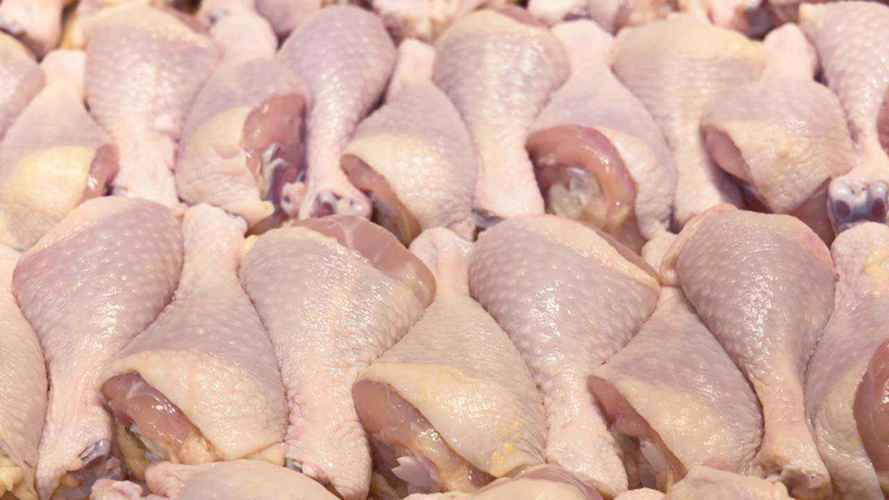 Fresh Frozen Chicken Business