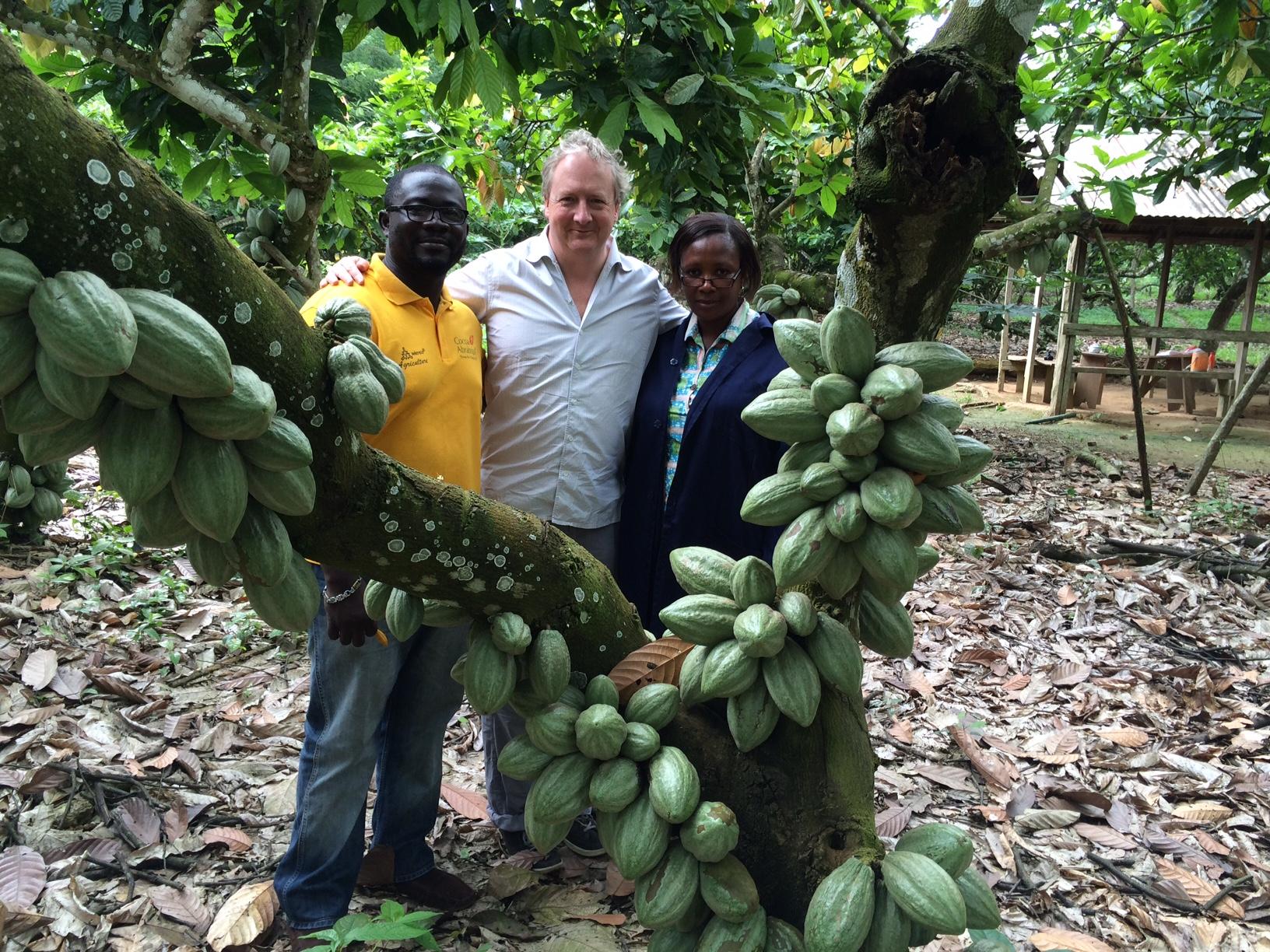 Cocoa Farming In Africa
