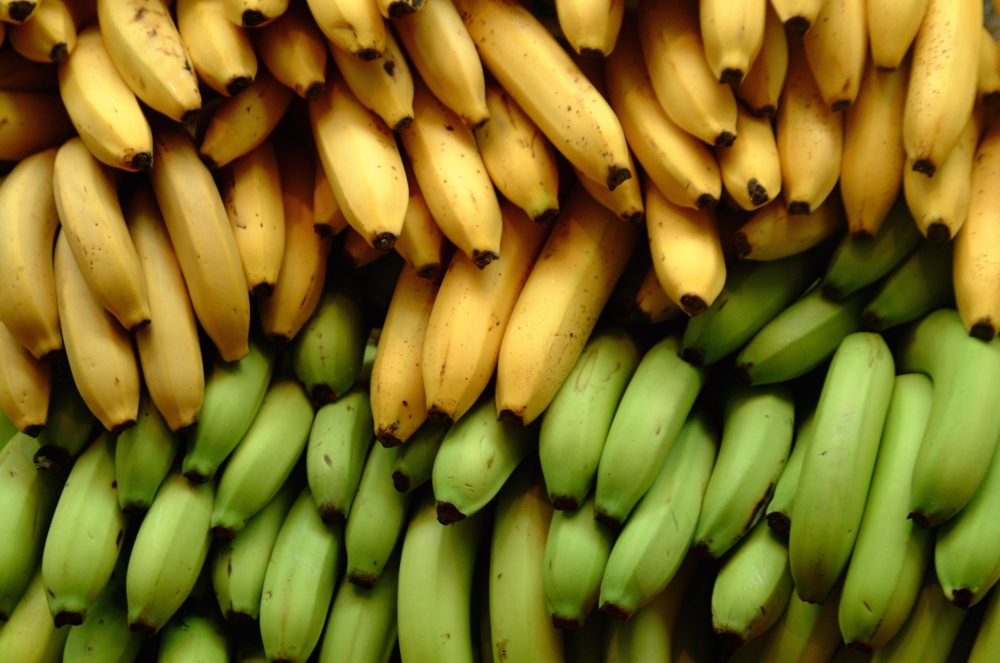Plantain and Banana Farming in Nigeria