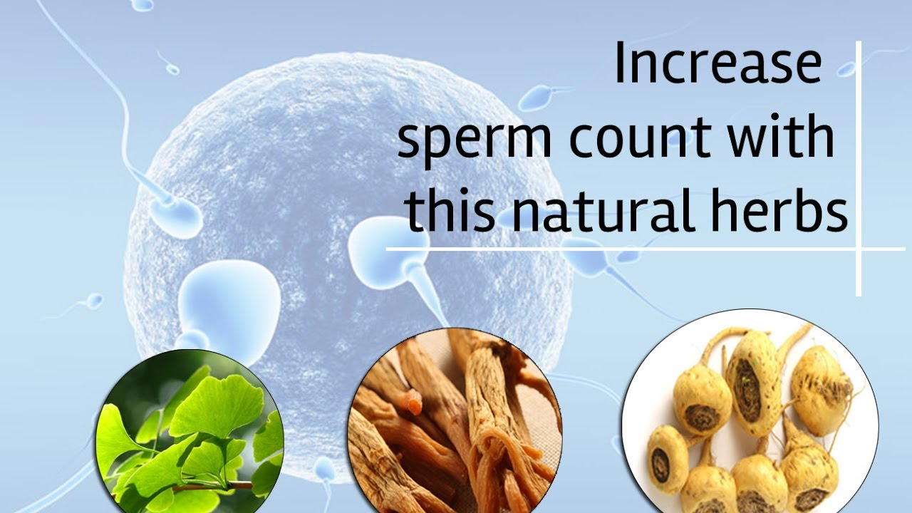 Herbal Treatment for Low Sperm Count