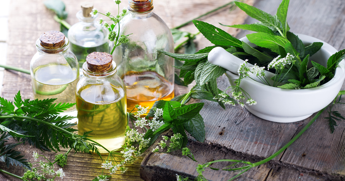 Herbal Cures And Treatment For Pile In Nigeria