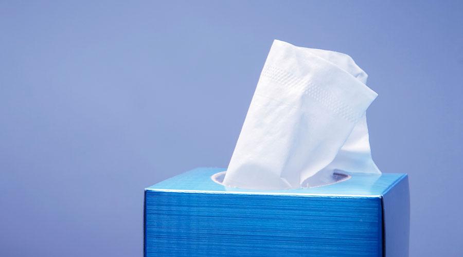 Tissue Paper (Toilet Roll) Factory in Nigeria