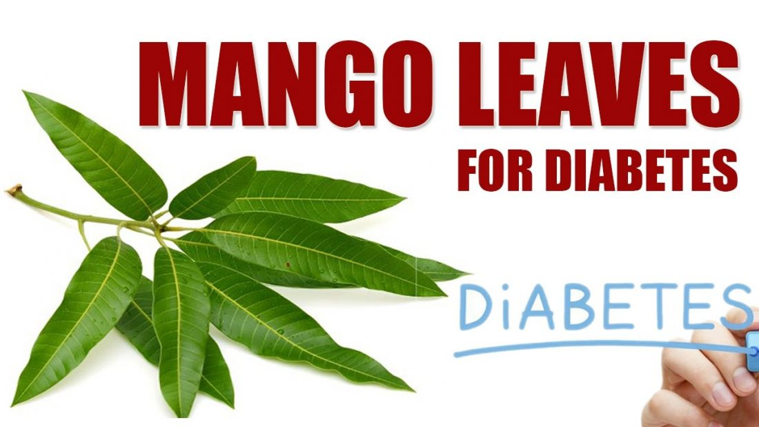 10 Benefits of Mango Leaves in Nigeria
